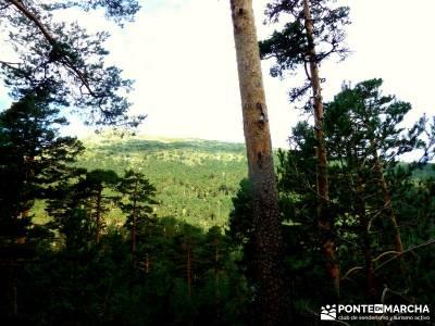 Garganta del Arroyo de Minguete - Puerto de Fuenfría;viajes culturales españa excursiones de fin d